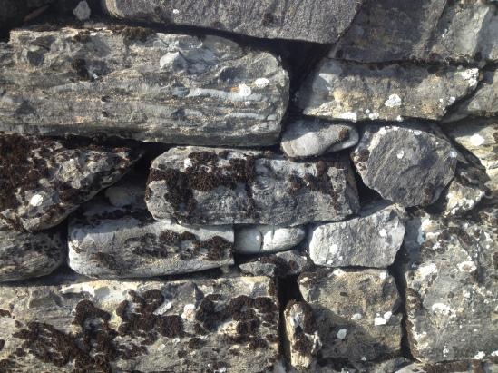 Stone Fence 1